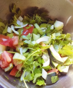Cilantro, tomatoes, onion, cucumber, lemon juice, rice vinegar. All organic. Mmm!